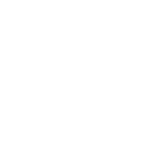 twitter-logo-button